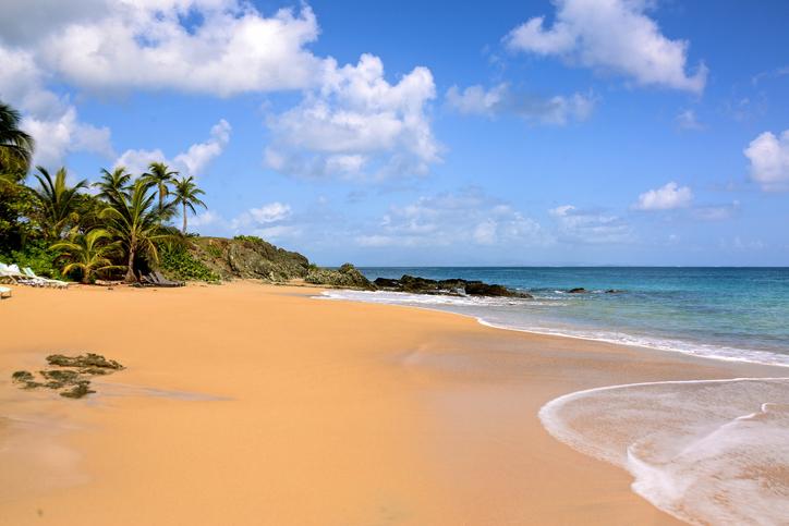 beach at viques puerto rico